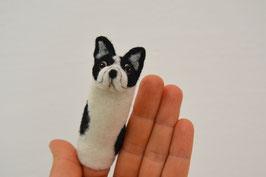 Fingerpuppe französische Bulldogge