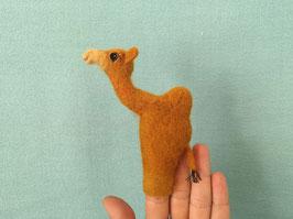 Fingerpuppe Dromedar