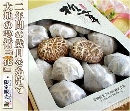 大分産椎茸花どんこ250g
