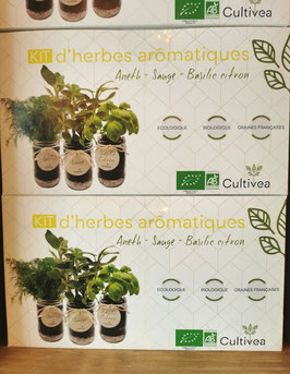 Kit d'herbes arômatiques  jaune