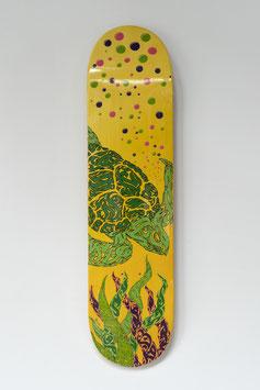 MANSOURI Rachid - Arabic Turtle - 05/2020