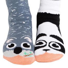 Panda & Koala (4-8 jr)