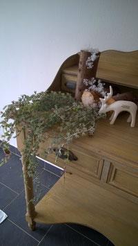 Lärchenzweig Busch gefrostet 95