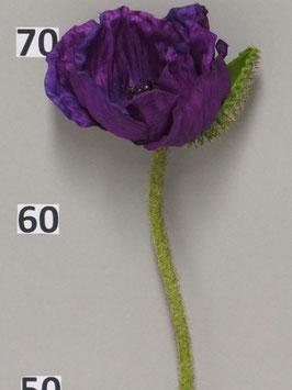 Mohnblume offen purple