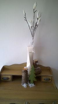Magnolienast gefrostet