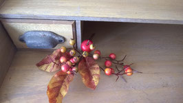 Herbst-Zweig dunkel