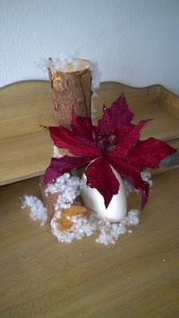 Weihnachtsstern bordeaux, Glitter