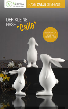 Hase Calle