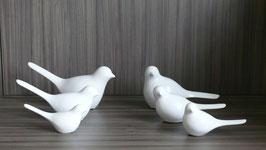 Vögel Tilla weiss-SSV