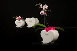 Kübel Herz Amore 15 cm
