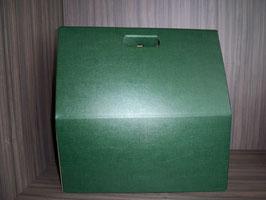 Präsentkarton grün 154