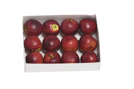 Apfel 4 cm dunkelrot