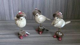 Vogel Winter mit Mütze