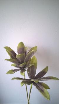 Schaumstoffblüte, brombeere-grün