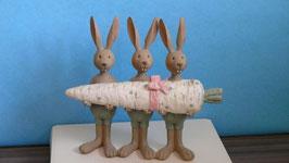 3 Hasen mit Möhre