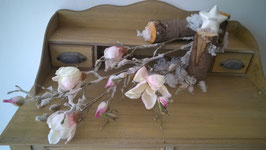 Magnolienzweig Frost