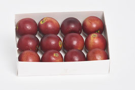 Apfel 4,5 cm dunkelrot