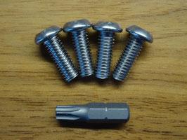 M6 x 16 Set Sicherheitsschrauben mit Pin-Torx-Adapter