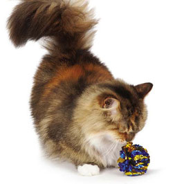 Bunte Knisterbälle für Kitty