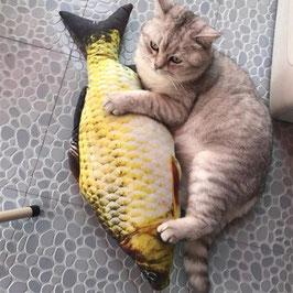 Fisch zum Jagen und Spielen