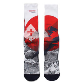 LRG - Elvation Socks