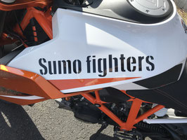 Sumo fighters Schriftzug 30x5,25cm
