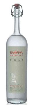 Uvaviva Americana di Poli 70 cl 40% Vol.