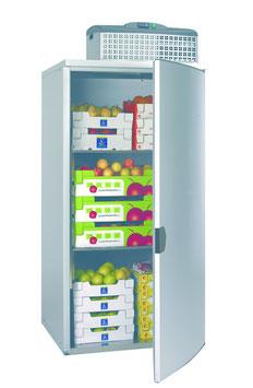 GGG Lager-Kühlzelle