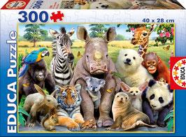 Puzzle 300 pièces - Educa