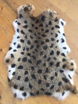 Konijnenvacht Leopard