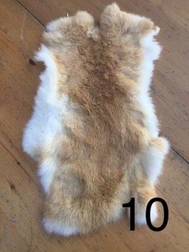 konijnenvacht 10