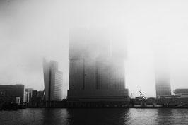 Europoort york