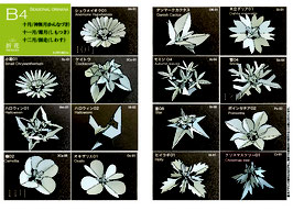 中級季節の花B4