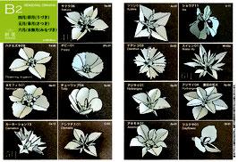 中級季節の花B2