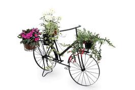"Deko-Pflanzen ""Fahrrad""; Geschenke-Dekoration"