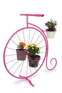 Deko-Pflanzen Einrad, Geschenke-Dekoration