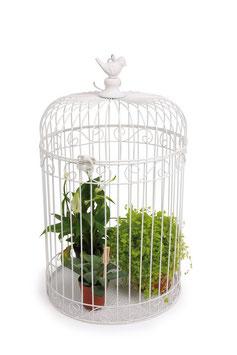 Deko-Vogelkäfig, Geschenke-Dekoration