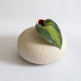 Bulbo di gladiolo rosso