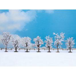 Winter Bomen 25075
