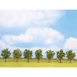 Fruitbomen 25090