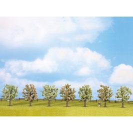 Fruitbomen 25092