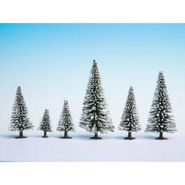 Sneeuw Sparren