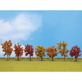 Herfst Bomen  25070