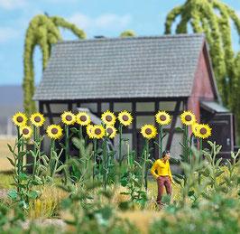 Busch 1261 Reuze Zonnebloemen HO