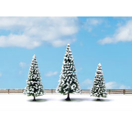 Sneeuwsparren 25234