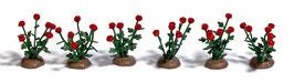 Busch 1241 36 rozen, geassembleerd HO