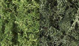 Woodland Dark Green Mix L168