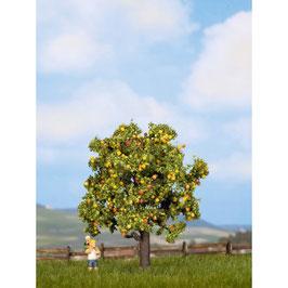 Boom Met Vruchten 21560