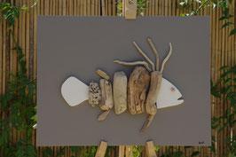 Mérou Taupe