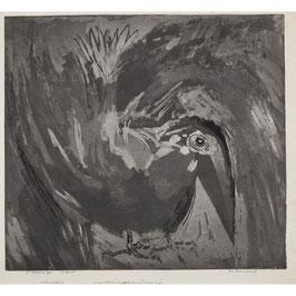 Vuurvogel zwart/wit met snavel tegen de grond